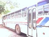 Ashok Leyland Viking  Bus For Rent.