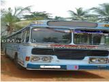 Ashok Leyland Bus For Rent