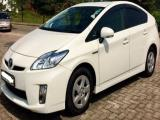 Toyota Prius  Car For Rent.