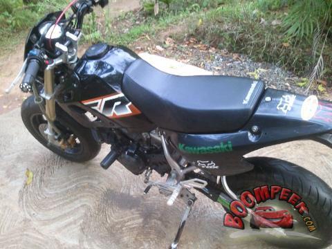 Kawasaki D Tracker Mini Motorcycle For Sale In Sri Lanka Ad Id