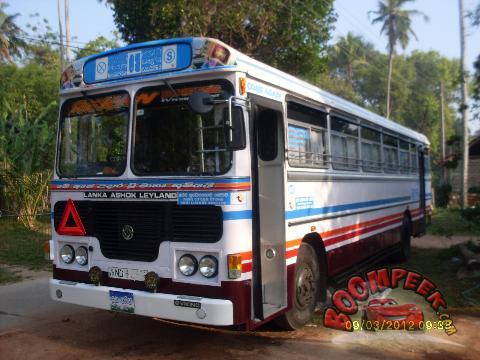 semi bus ashok leyland viking 54 sheet turbo bus for sale in sri lanka