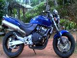 2008 Honda -  Hornet 250 chassis 115 Motorcycle For Sale.