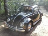 Volkswagen Beetle  Car For Sale.