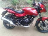 2008 Bajaj Pulsar 200 DTS - i Motorcycle For Sale.