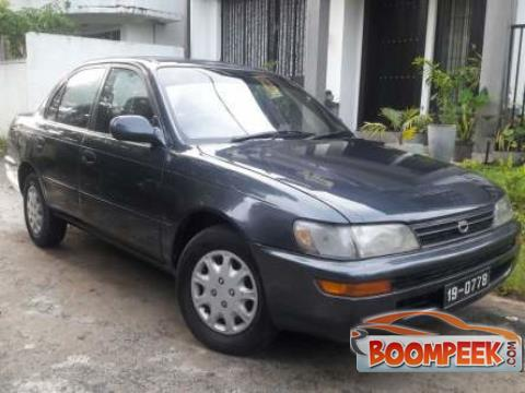 Toyota Corolla  Car For Sale