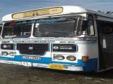2011 Ashok Leyland Viking Ruby Bus For Sale.
